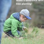Trees Ontario and MNR Partner to Plant 50 Million Trees by 2025