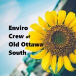 Nix the Six Campaign - Environment Crew of Old Ottawa South