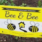 Create Your Own Bee & Bee Space