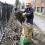 Hintonburg & Wellington Village Spring Cleanup