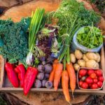 Ottawa Farm Fresh CSA - Conscious Eating Made Simple