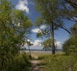Spring on the Greenbelt's Trails - Shirleys Bay
