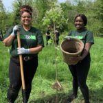 National Tree Day: A meaningful way to reflect on the positive impact of trees