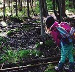 Wesley Clover Parks— Forest School