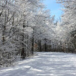 Kanata Nordic Ski Club - helps make Ottawa Winters more fun for the whole family