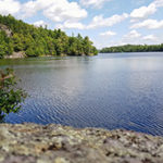 Whitefish Lake Conservation Success - Frontenac Arch Natural Area