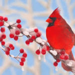 Christmas Bird Count for Kids at Landon Bay