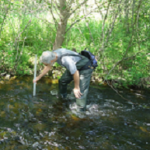 City Stream Watch Program - Monitoring in Corkery Creek