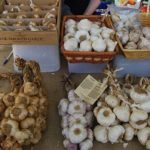 Carp Farmers' Market – 18th Annual Garlic Festival