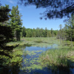 High Lonesome Nature Reserve – Open to the Public Year-Round