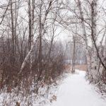 Top 10 Nature Hot Spots in Ottawa