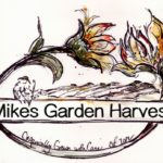 Mike's Garden Harvest - Organically grown in naturally enriched soil