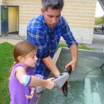 St Lawrence River - River Institute Community Programs