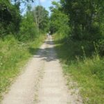 Renfrew County Nature Notebook - Welcome Nature Lovers!
