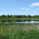Richmond Conservation Area - Walking Trails