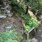 Sheila McKee Park - Walking Trail