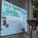 Lindenlea Community Garden