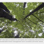 Good for you, Good for our forests - Sustainable Forest Initiative
