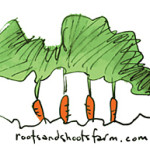 Organic Vegetable Farm - Community Shared Agriculture (CSA)