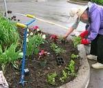 Senior Organic Gardeners (SOG) - Eastern Ontario and Western Quebec