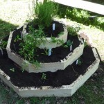 Woodroffe HS School Garden